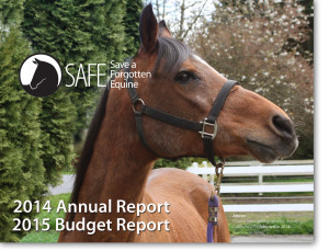 2014-Annual-Report-image