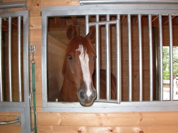Honeycutt Aug 2007
