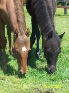 Lola & Aiden - May 2009