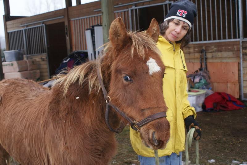 Aiden Update from Jan 4,2009