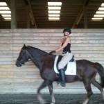 First day back under saddle