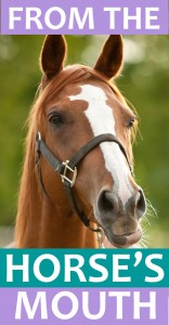 horses_mouth_icon