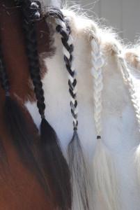 Miah's braids