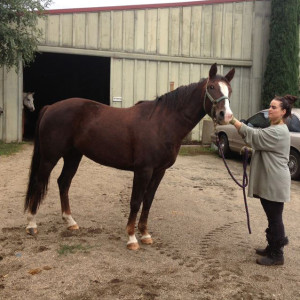 April arrives safe & sound at Equamore