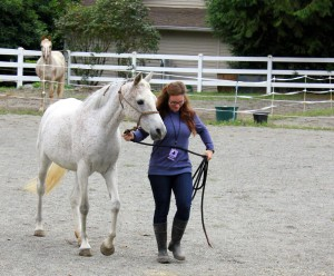 Heather walking Karma for her rehab.