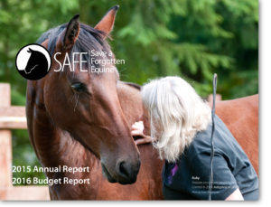 2015-Annual-Report-image