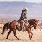 Joel Conner Horsemanship Clinic: March 15-18, 2018