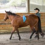 Renee: Joel Conner Clinic Report