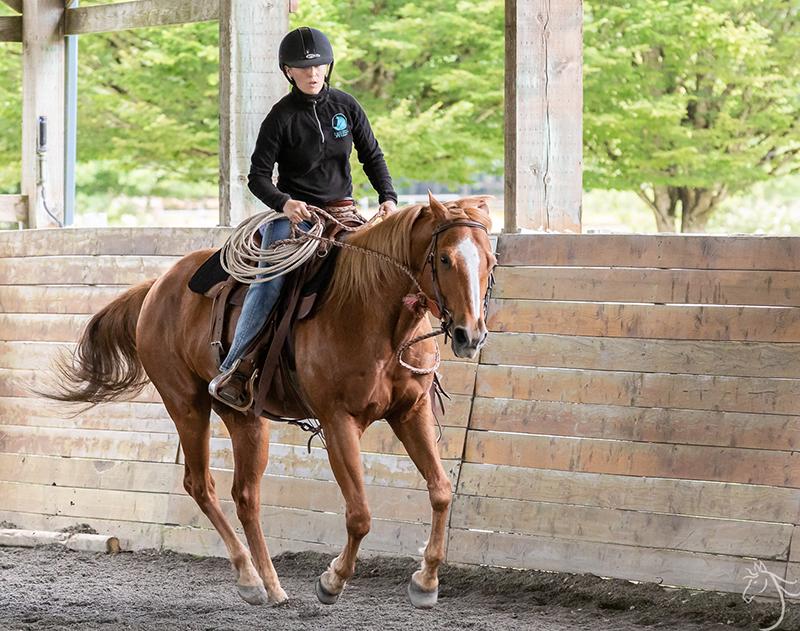 Nashville: Horsemanship Clinic Report