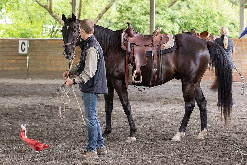 Ru: Horsemanship Clinic Report