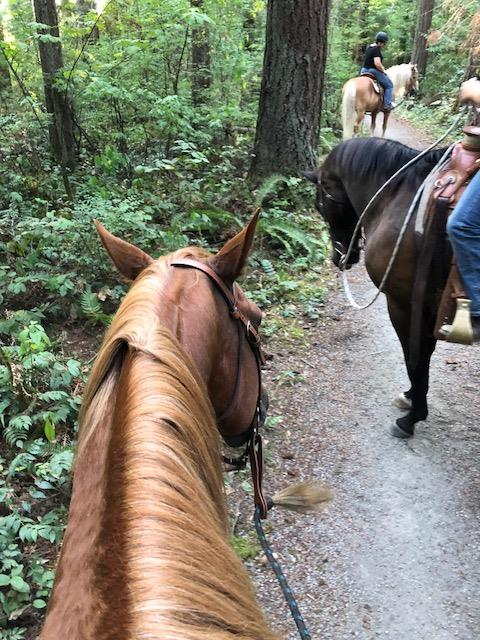 Nashville's First Trail Ride