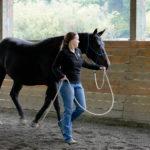 Joel Conner Clinic Report: Mina