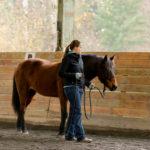 Joel Conner Clinic Report: Sage
