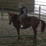 Sienna's First Ride!
