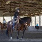Joel Conner Clinic Report: Stella