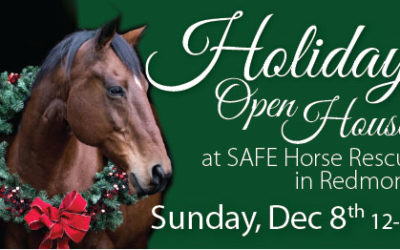 Holiday Open House — Dec 8 2019