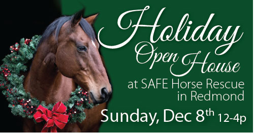 Holiday Open House — Dec 82019