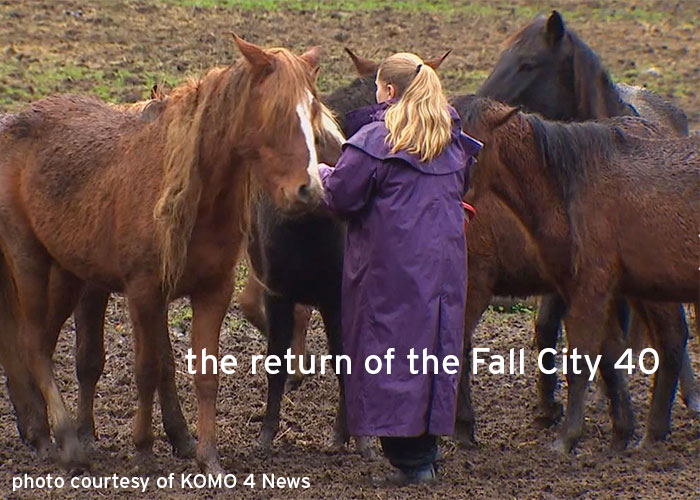 Horses Rescued in Enumclaw