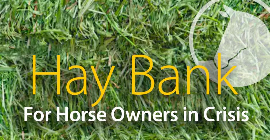 Hay Bank Update