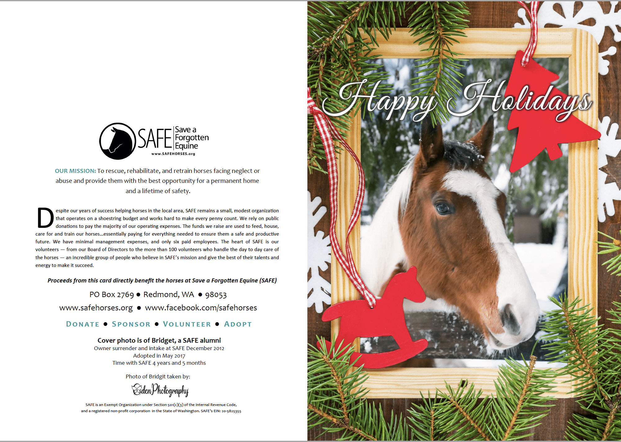 SAFE Holiday Cards are now available!