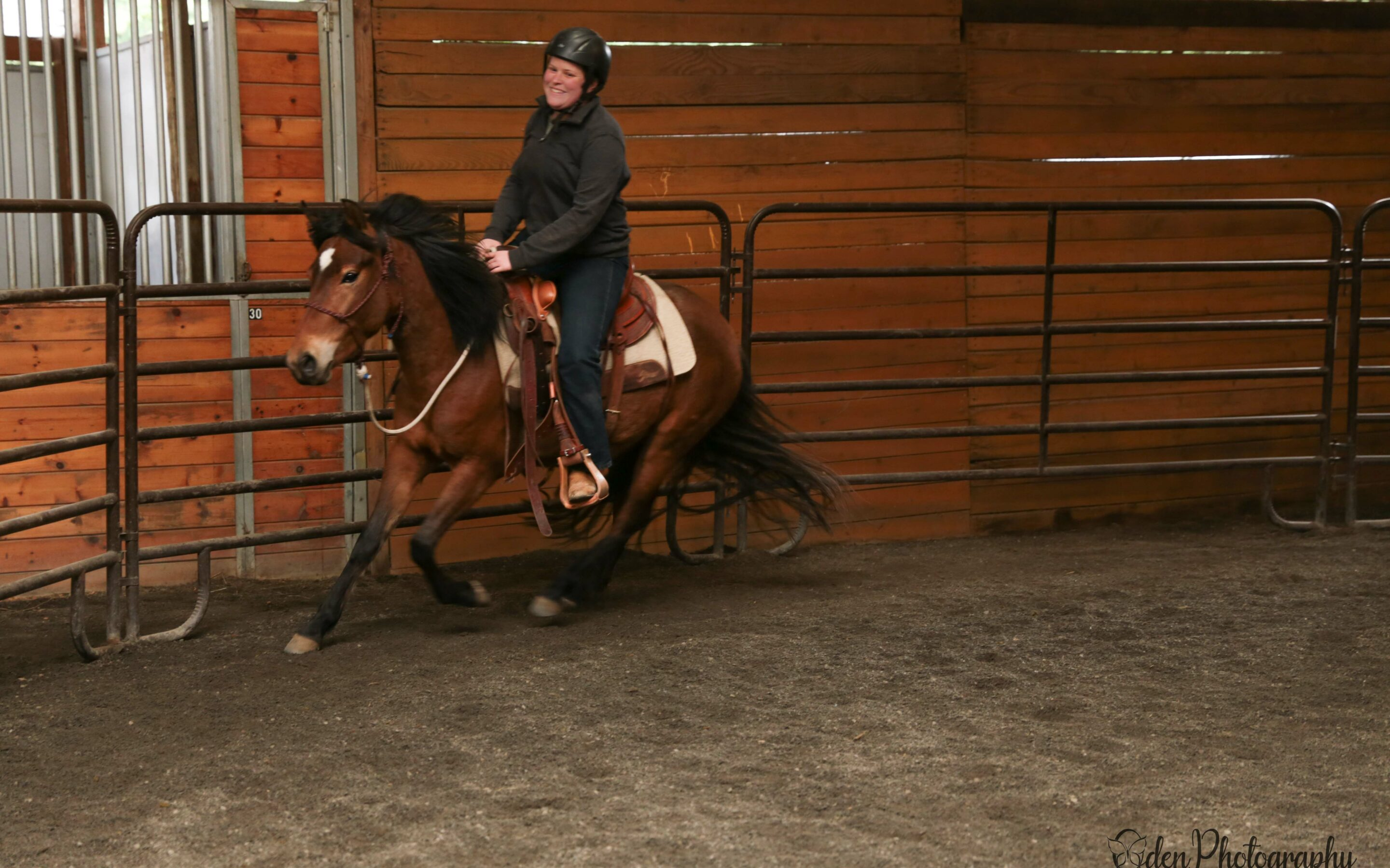 Barb is a Riding Horse!